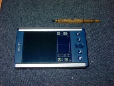 DSC00531.jpg