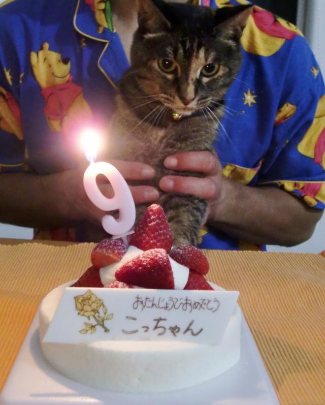こっちゃんのお誕生日