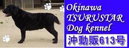 okinawatsurustar