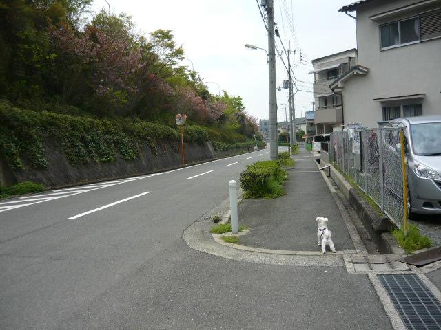 P1370859.jpg