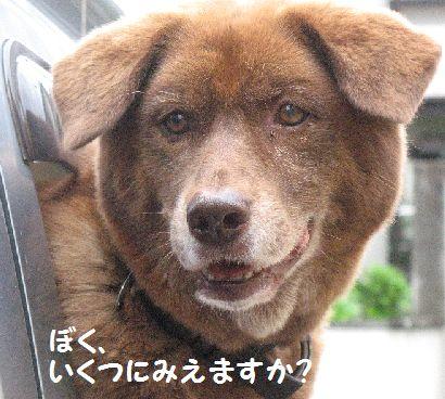 IMG_0328ぼく