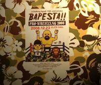 BAPESTAプロレスリング