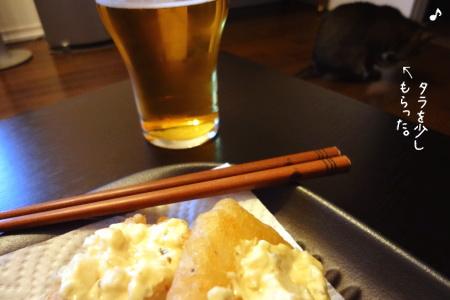 猫と麦酒と魚