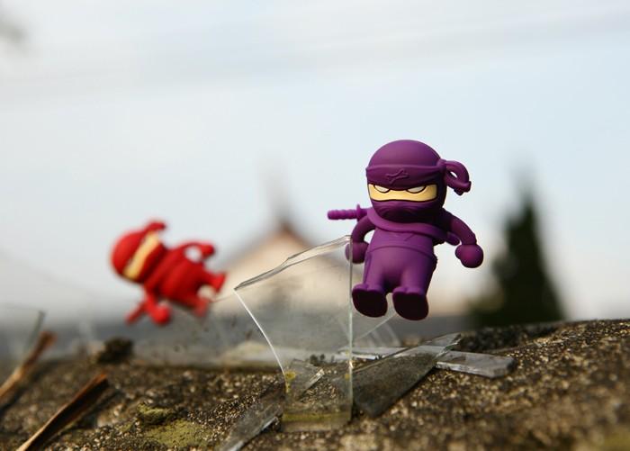NinjaDriver_01.jpg