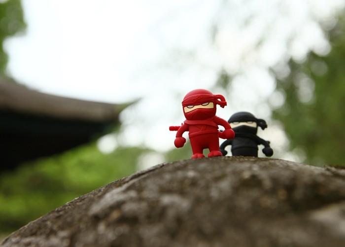 NinjaDriver_10.jpg