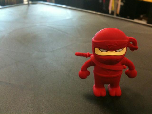 NinjaDriver_11.jpg